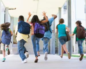 Gradinitele si scolile din sectorul 2 vor fi dotate cu butoane de panica