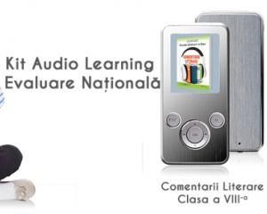 Materie completa pentru examenul de limba romana BAC si Evaluare Nationala