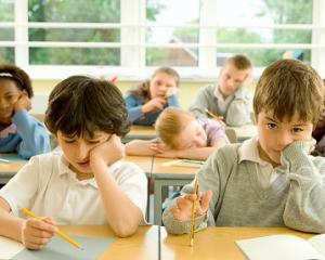 Fractii si fizica la clasa a II-a: reactiile parintilor