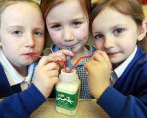 Elevii din 7 judete nu beneficiaza de programul gratuit Cornul si laptele
