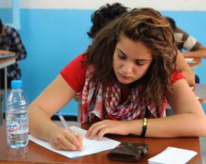 Bac 2014: Subiecte si barem de corectare limba materna