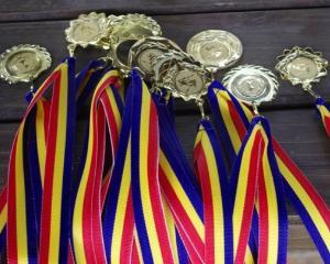 Topul medaliilor castigate de elevii romani in 2013