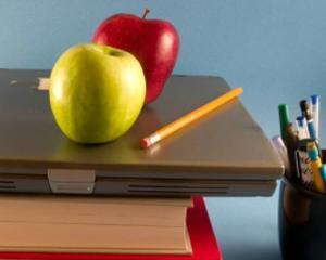 """Programul """"Fructe in scoli"""", doar pe hartie. Merele nu au ajuns nici dupa 3 luni la elevi"""
