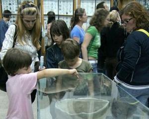 Educatie artistica pentru elevi la Muzeul Antipa
