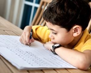 Ajuta-l pe cel mic sa ia note mari la scoala
