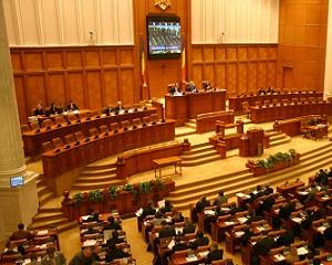 Elevii si studentii invata cum sa fie parlamentari