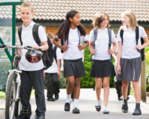 Masuri de urgenta pentru asigurarea pazei in scoli
