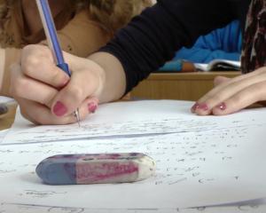 Pregatire pentru Bacalaureat si Evaluarea Nationala 2014