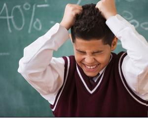 Simulare evaluare nationala: promovabilitate zero la  la 30 de scoli din acelasi judet