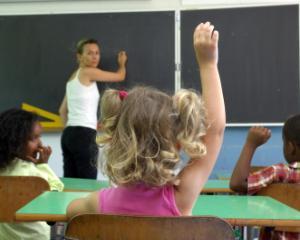 Un senator propune plata salariilor pentru profesori integral, nu esalonat, pentru perioada 2008-2011