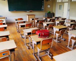 Sfantu Gheorghe: Invatamantul in limba romana va fi concentrat in cinci unitati scolare