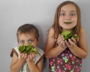 Top 5 alimente secrete care ii ajuta pe elevi sa se concentreze si sa invete mai usor