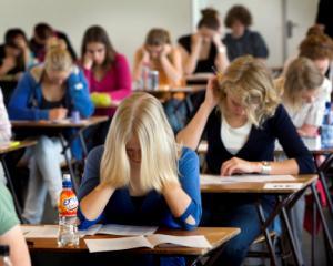 A inceput Evaluarea Nationala 2014 pentru clasa a VI-a - subiecte limba si comunicare