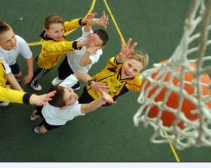 Ponta vrea terenuri de baschet in toate in scolile