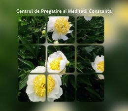 Centrul de Pregatire si Meditatii Constanta